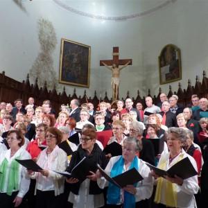 2015 concert à Ste Cécile les vignes (84)