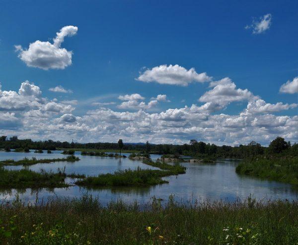Parc de Miribel-Jonage